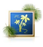 Picture tropic palm Royalty Free Stock Photos