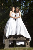 Picture of two brides standing on concrete object in nature surr Stock Images