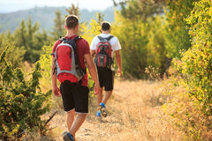 PIcture of a two hikers walking. In the forest Stock Photos