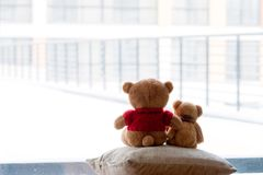 Two embracing bear cubs on a white background. Picture of two teddies hugging bears on a light background Stock Images