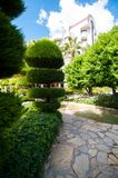 Picture of unusually cut bush in a hotel alley area. An unusually cut bush in a hotel alley area, summer vacation stock photo