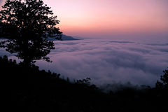Picture of the valley of fog Stock Photos