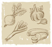 Picture of vegetables Royalty Free Stock Images