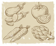 Picture of vegetables Stock Photography