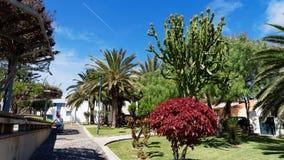 Picture from Vila Baleira, Porto Santo, Madeira Islands Royalty Free Stock Photography