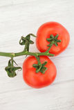 Picture of vine tomatoes on a white wooden background Stock Images