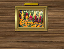 Picture on wall. Picture in frame on wall with light Royalty Free Stock Images
