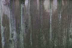Old wet wood fence shot just after a rain storm. royalty free stock photography