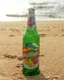Kingfisher bottle at sea beach royalty free stock photography