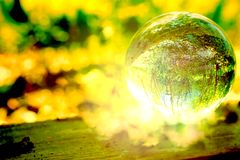 A magic forest in a glass ball stock photos