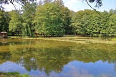 Picturesque lake in a summer park. The picture was taken in Ukraine, in the Beregvar park. In the photo there is a picturesque lake in a sleepy summer park royalty free stock photos