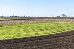 Freshly plowed field in spring is ready for cultivation.  Zhytomyr region, Ukraine. Royalty Free Stock Photos