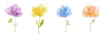 Picture water colour, hand draw, Purple flowers, yellow, blue, orange. Picture water colour, hand draw, Set of four flowers of hand painted watercolors. Purple stock illustration