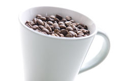 Picture of whole coffee grains in a coffee cup Royalty Free Stock Photos