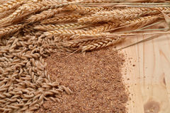 Picture of wholemeal pasta from organic grain, cereal flour and Stock Photos