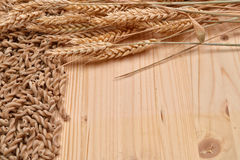 Picture of wholemeal pasta from organic grain and ears of wheat Royalty Free Stock Photo