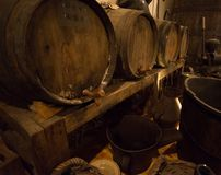 Wine barrels in cellar Stock Image