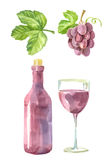 Picture of wine Royalty Free Stock Photo