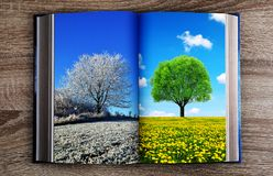 Picture of winter and spring landscape in the book. Concept of change season Stock Image