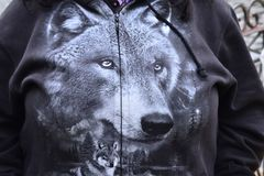 The picture of a wolf on top of clothing closeup Stock Image