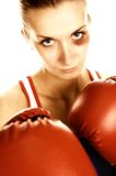 Picture of a woman boxer Royalty Free Stock Photography