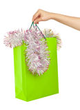 Picture of woman's hand with green shopping bag Stock Images