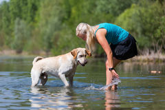 Woman plays with her labrador retriever in a lake Royalty Free Stock Photography