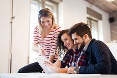 Picture of young architects discussing in office royalty free stock photos