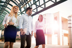 Picture of young attractive business partners standing Royalty Free Stock Photo