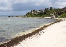 Beach, Half Moon Bay, North Akumal, Mexico Royalty Free Stock Photography
