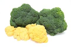 Broccoli and cauliflower in a white background. Pictured broccoli and cauliflower in a white background Stock Photos