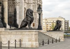 Bronze lion statues flanking the East entrance of the Hungarian Parliament Building, Budapest. Pictured are bronze lion statues flanking the East entrance of the royalty free stock image