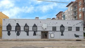 Wall mural featuring birds by Frank Camagna, Deep Ellum, Texas. Pictured is a building wall mural featuring black birds.  It was painted by Frank Campagna, owner Royalty Free Stock Photos