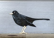 Wall mural featuring birds by Frank Campagna, Deep Ellum, Texas. Pictured is one section of building wall mural featuring black birds.  It was painted by Frank Stock Photo