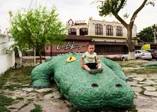 A little boy is sitting on a huge green crocodile royalty free stock photo