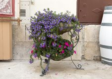 A wire planter housing plants with small red and purple flowers on a street in the village of Locorotondo, southern Italy. Pictured is a wire planter housing Royalty Free Stock Image