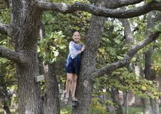 Amerasian girl posing in the trees in Oklahoma City, Oklahoma. Pictured is a 9 year-old Amerasian girl posing in a tree in Oklahoma City, Oklahoma.  She will Stock Image