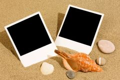 Pictures on the beach with cockleshells Stock Image