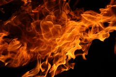 Dance of the camp fire. Pictures of the dance of the flames in camp fire royalty free stock photography