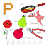 Pictures for letter P Royalty Free Stock Images