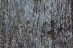Pictures of old wood, natural colors for the background. Royalty Free Stock Photography