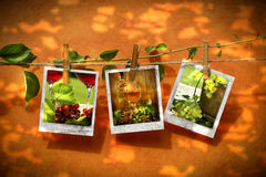 Pictures pinned on clothesline stock illustration