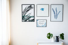 Pictures with plants motif. On the white wall Royalty Free Stock Image