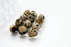 Pictures of quail eggs Royalty Free Stock Photo