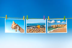 Pictures of sea and sea creatures hanging on colorful pegs Royalty Free Stock Photos