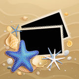 Pictures, shells and starfishes on sand background Stock Images
