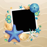 Pictures, shells and starfishes on sand background Stock Photos