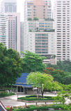 Pictures of trees in Park with High-rise buildings on business d Stock Image