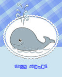 Pictures from the whale. For bride-kid Royalty Free Stock Photos