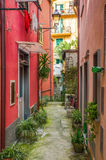 Picturesque alley in Monterosso al Mare, Italy. Picturesque alley in Monterosso al Mare, Cinque Terre, Italy Royalty Free Stock Photos